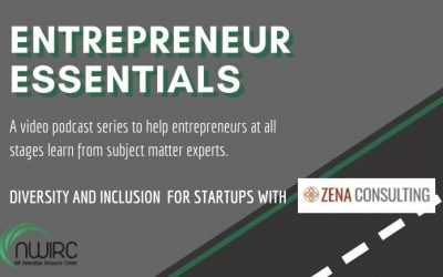 Diversity and Inclusion practices for startup entrepreneurs.